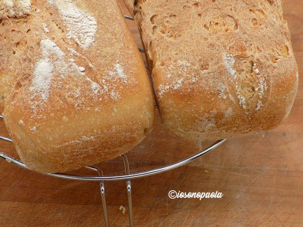 ricetta pane con lievito naturale