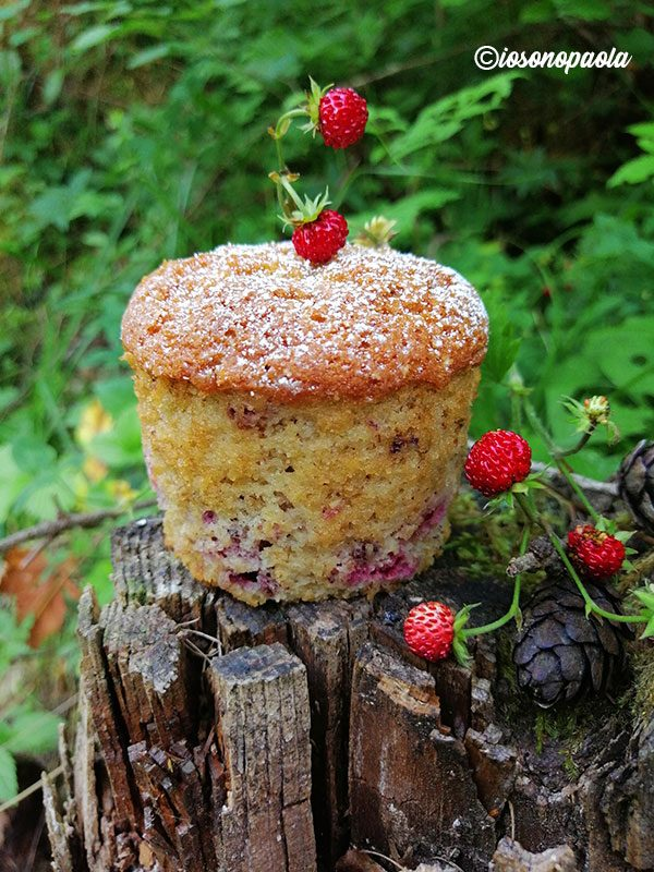 ricetta muffin ai frutti di bosco